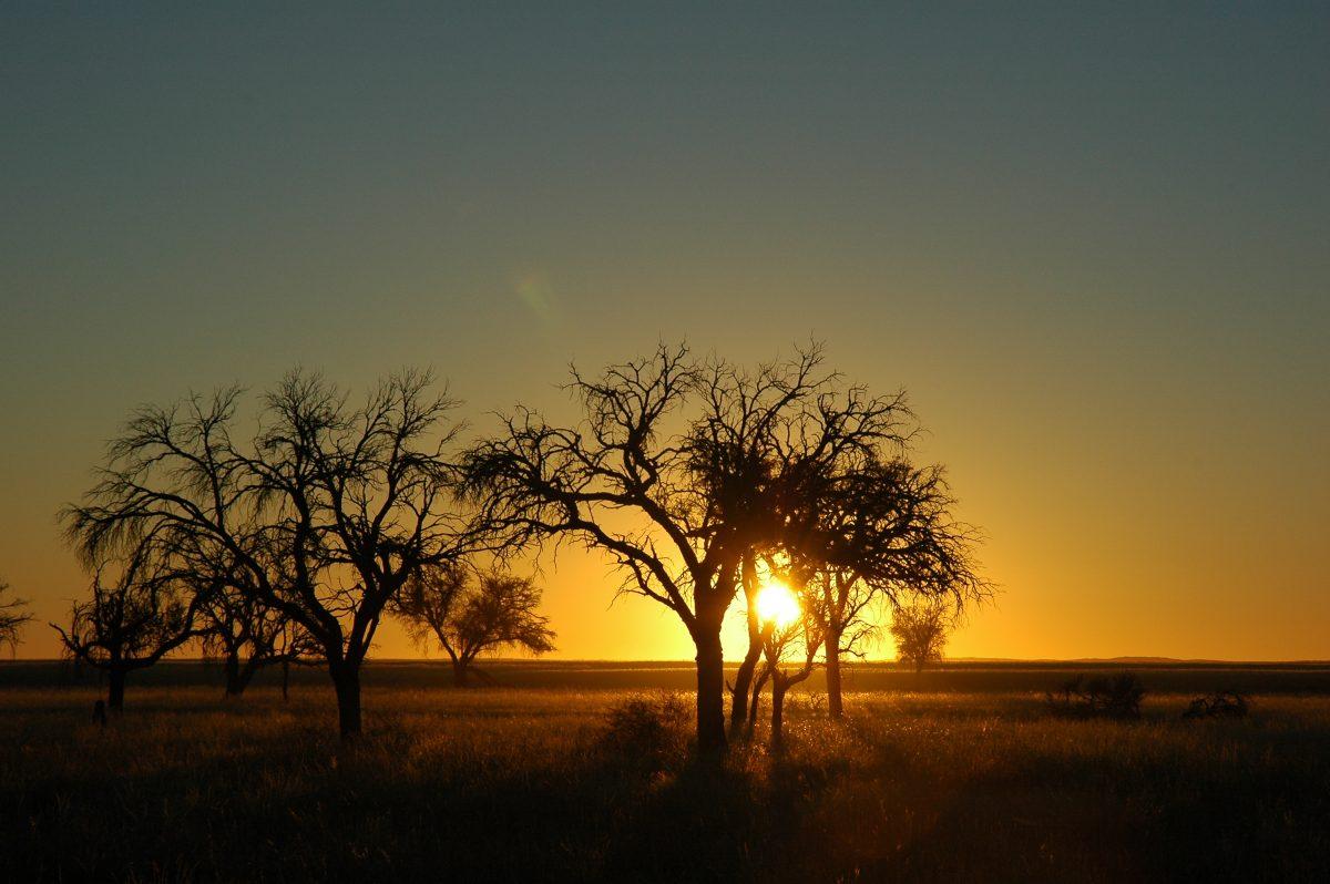Pourquoi faire étape en Namibie lors d'un voyage en Afrique ?