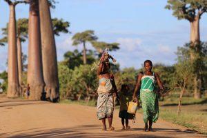 Dans la peau d'un aventurier lors d'un séjour en Afrique